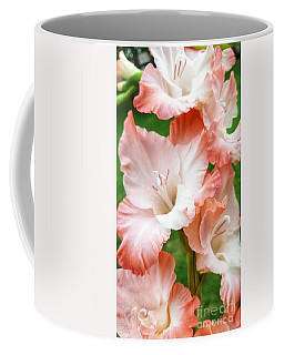 Gladiolus Ruffles  Coffee Mug