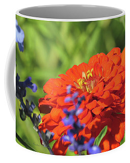 Glances Of Summer - Images From The Garden Coffee Mug