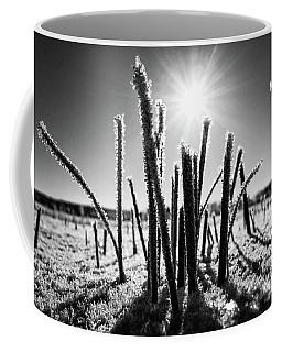 Glare Of The Spring Sun Coffee Mug