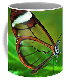 Coffee Mug featuring the photograph Glasswinged Butterfly by Ralph A Ledergerber
