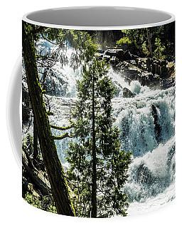 Glen Alpine Falls 1 Coffee Mug