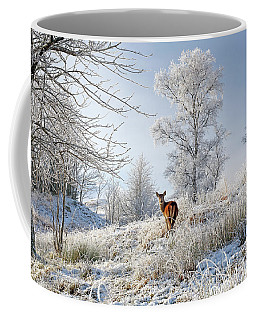 Coffee Mug featuring the photograph Glen Shiel Misty Winter Deer by Grant Glendinning