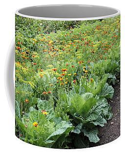 Glenveagh Castle Gardens 4276 Coffee Mug