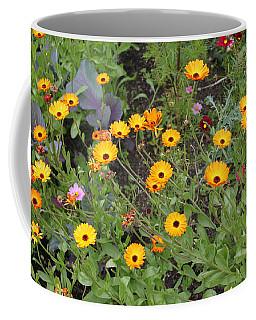 Glenveagh Castle Gardens 4279 Coffee Mug