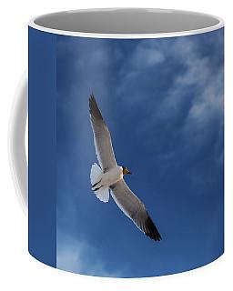 Glider Coffee Mug