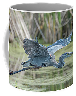Gliding Over The Wetlands... Coffee Mug