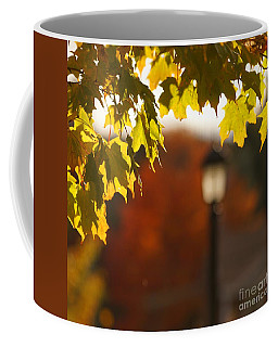 Coffee Mug featuring the photograph Glimpse Of Autumn by Aimelle