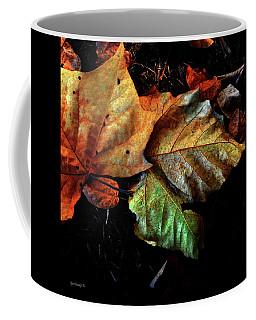 Glorious Autumn Colors Coffee Mug