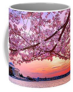 Glorious Sunset Over Cherry Tree At The Jefferson Memorial  Coffee Mug