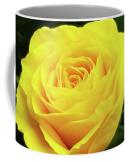 Glorious Yellow Rose Coffee Mug