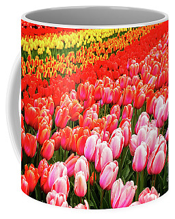 Glory Of  Tulips Coffee Mug by Anastasy Yarmolovich