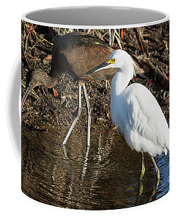 Glossy Ibis And White Heron Coffee Mug