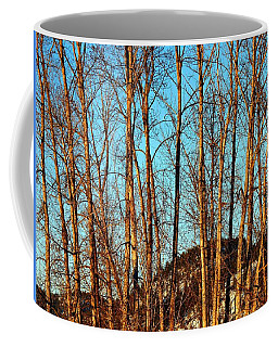 Coffee Mug featuring the photograph Glow Of The Setting Sun by Will Borden