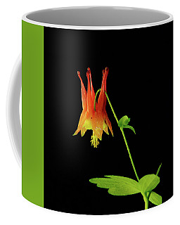 Glowing Colombine Coffee Mug