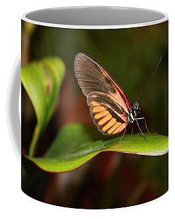 Glowing With Beauty Coffee Mug