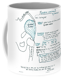 Gluteus Minimus Coffee Mug