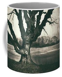 Gnarled Old Tree Coffee Mug