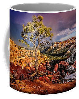 Gnarled Tree At Bryce Canyon Coffee Mug