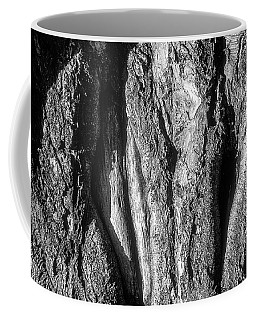 Gnarled Tree Trunk Coffee Mug