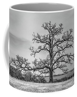 Gnarly Nature Coffee Mug