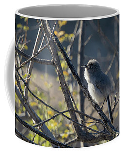 Gnatcatcher Coffee Mug