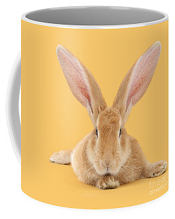 Go Ahead I'm All Ears Coffee Mug