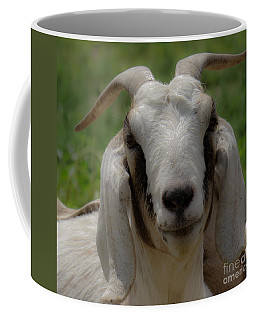 Goat 1 Coffee Mug