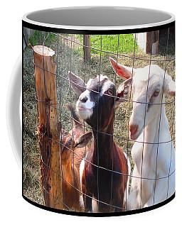 Coffee Mug featuring the photograph Goats by Felipe Adan Lerma