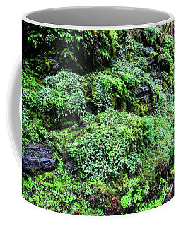 God Did The Landscaping Coffee Mug by Katie Wing Vigil