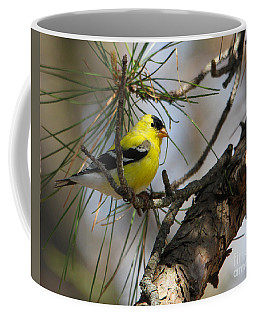Gold Finch Coffee Mug