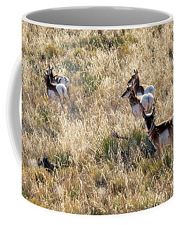 Coffee Mug featuring the photograph Golden Antelope Herd by Mike Dawson