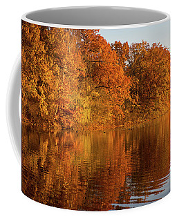 Coffee Mug featuring the photograph Golden Autumn2 by Lilia D