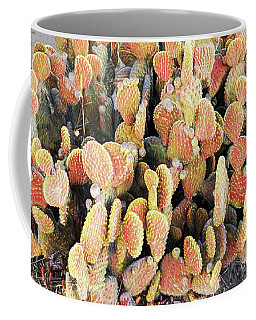 Coffee Mug featuring the photograph Golden Beaver Tail Catcus by Linda Phelps