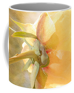 Golden Bowl Tree Peony Bloom - Back Coffee Mug