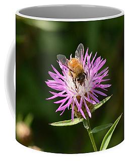 Golden Boy-bee At Work Coffee Mug by David Porteus