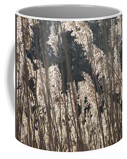 Golden Brown Coffee Mug