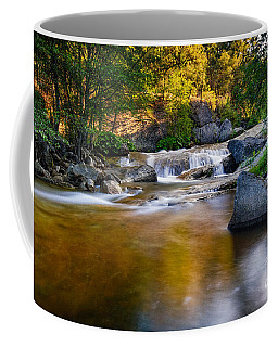 Golden Calm Coffee Mug
