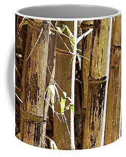 Coffee Mug featuring the photograph Golden Canes by Linda Lees