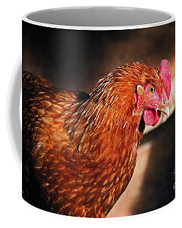 Coffee Mug featuring the photograph Golden Comet by Mary Machare