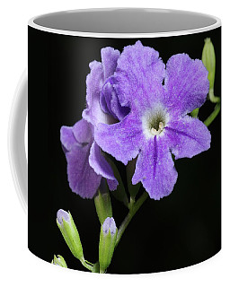 Coffee Mug featuring the photograph Golden Dewdrop II by Richard Rizzo
