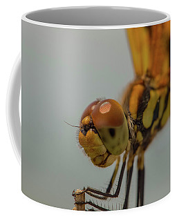 Golden Dragonfly Coffee Mug by Christopher L Thomley