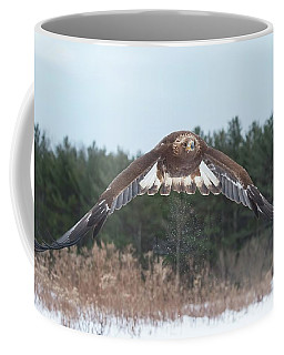 Golden Eagle Flying Low Coffee Mug by CR Courson