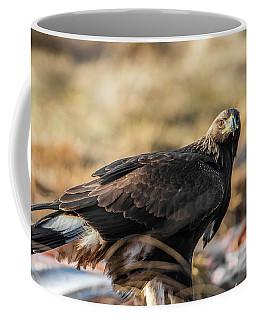 Golden Eagle's Glance Coffee Mug by Torbjorn Swenelius