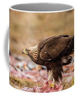 Golden Eagle's Profile Coffee Mug by Torbjorn Swenelius