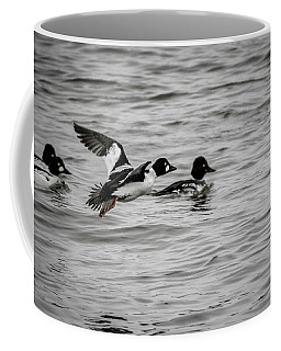 Coffee Mug featuring the photograph Golden Eye In Flight by Ray Congrove