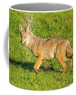 Golden Eyes Coffee Mug by Marc Crumpler