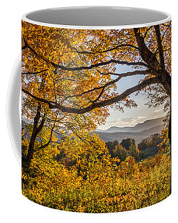 Vermont Framed In Gold Coffee Mug