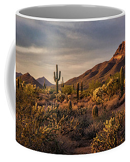 Coffee Mug featuring the photograph Golden Hour On The Usery  by Saija Lehtonen