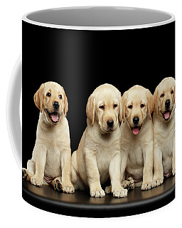 Coffee Mug featuring the photograph Golden Labrador Retriever Puppies Isolated On Black Background by Sergey Taran