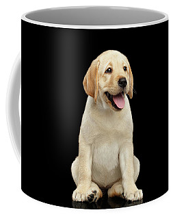Coffee Mug featuring the photograph Golden Labrador Retriever Puppy Isolated On Black Background by Sergey Taran